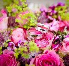 Los distintos tipos de anillos